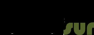 dicsur.es logo